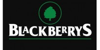 blackberrys.com logo